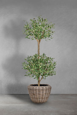 Olive 2 balls grey.jpg