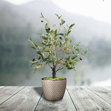 Olive Table Tree.jpg