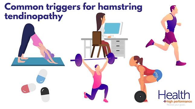 Hamstring tendinopathy (3).png