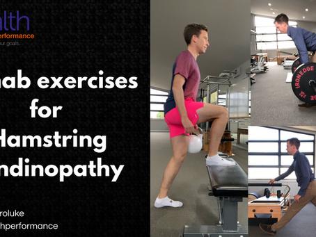 Rehab exercises for hamstring tendinopathy