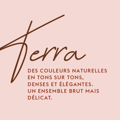 TERRA-02-02.jpg