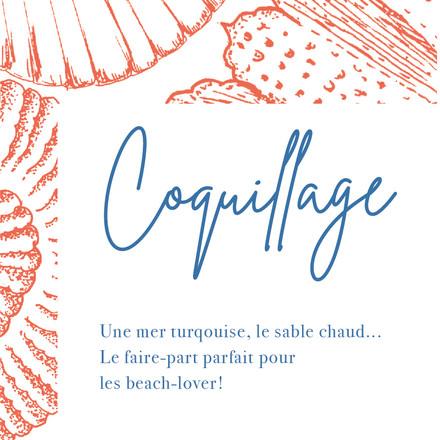COQUILLAGE-02.jpg