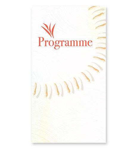 "Programme ""Nacre"""