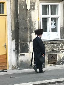 La viena judía