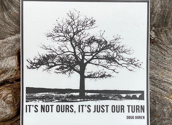 Square Lone Oak Sticker