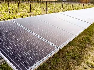Padthaway Solar Farm
