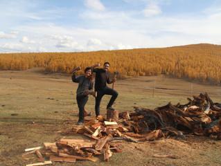 Volontariat chez une famille nomade en Mongolie