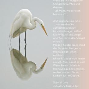 Die Reflexion im Spiegel.