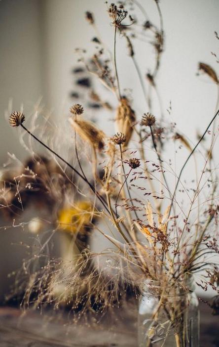 Elles sont si jolies. Joue avec le graphisme des fleurs. C est le moment parfait.La vie peut etre si simple.