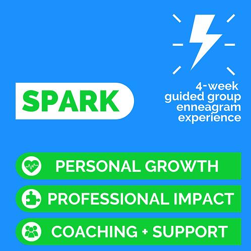 | SPARK | on Fridays (July/Aug 2021)