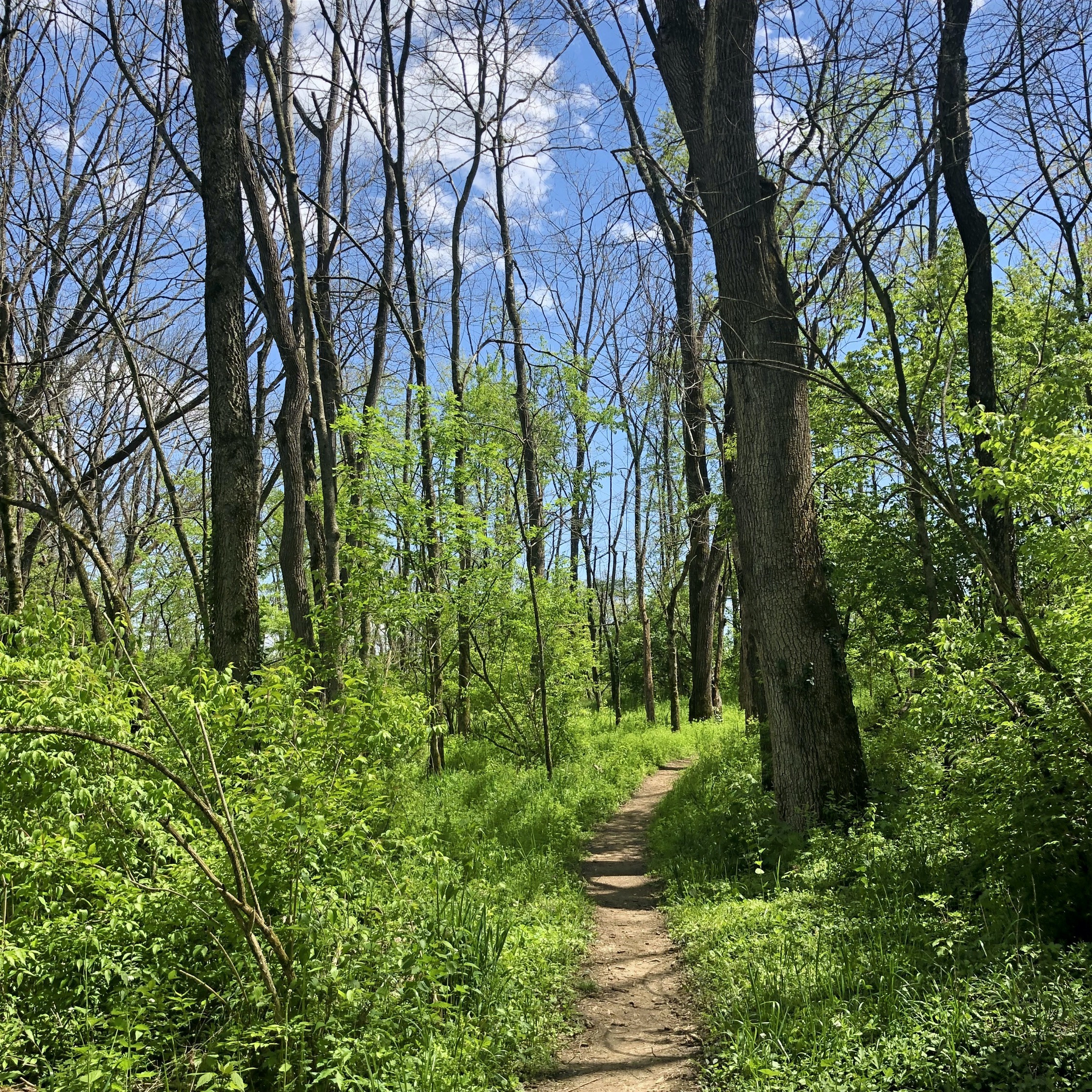 Breakout: Hiking