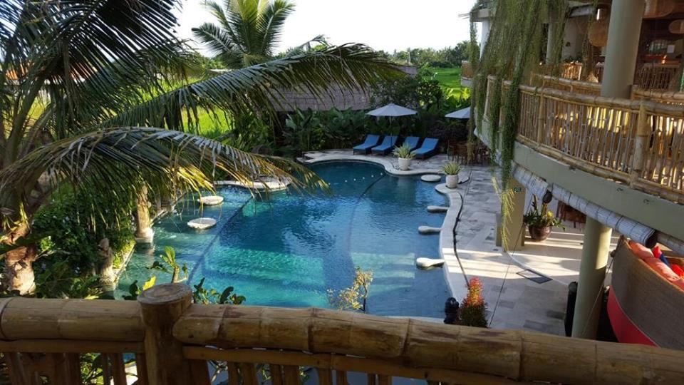 Bali Retreat Pool.jpg
