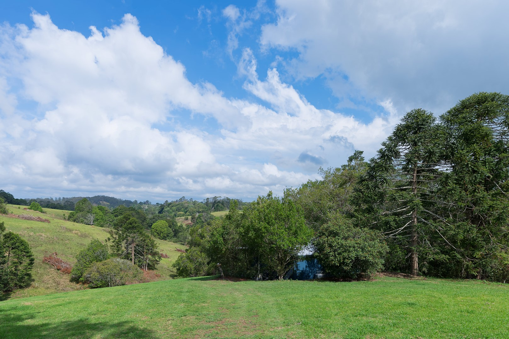 Jacaranda_Cottages_Maleny_Views_10