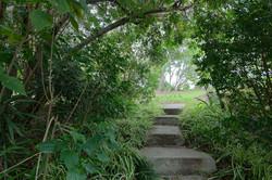 Jacaranda_Cottages_Maleny_Views_17