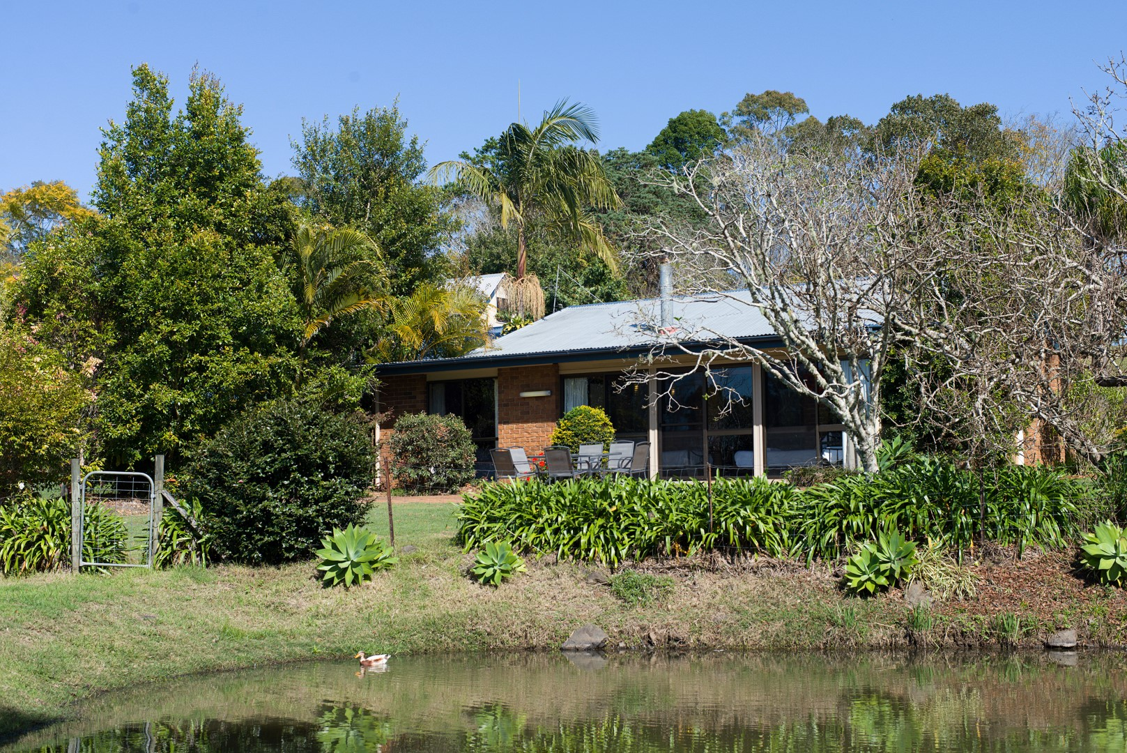 Jacaranda_Cottages_Maleny_Cathedral_Exterior