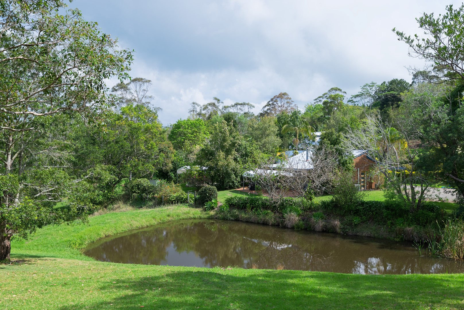 Jacaranda_Cottages_Maleny_Views__8