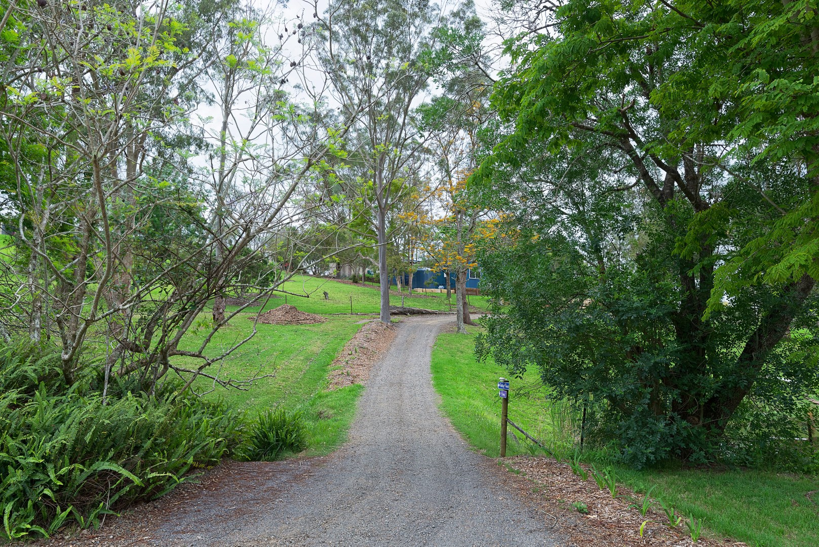 Jacaranda_Cottages_Maleny_Views_13