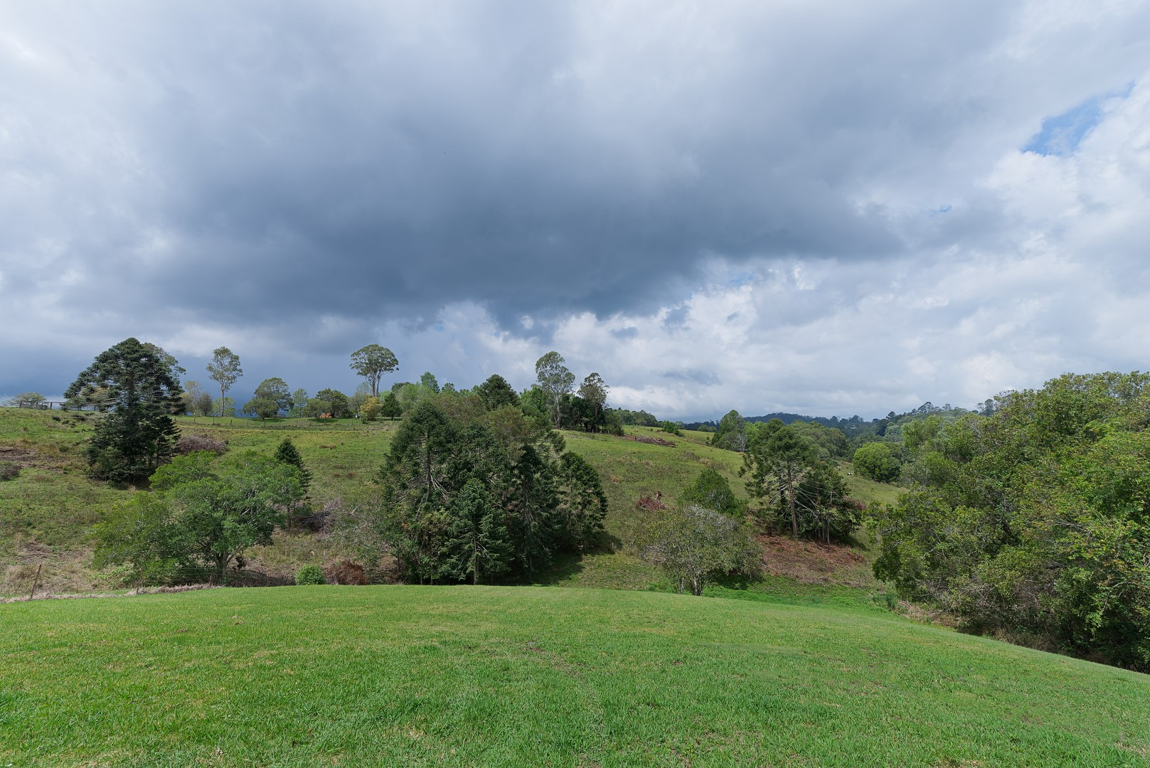 Jacaranda_Cottages_Maleny_Views_7