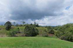 Jacaranda_Cottages_Maleny_Views_7