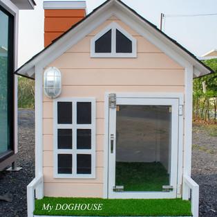 บ้านแมวติดพัดลม.jpg