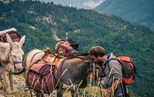 Randonnée avec des ânes dans le Vercors