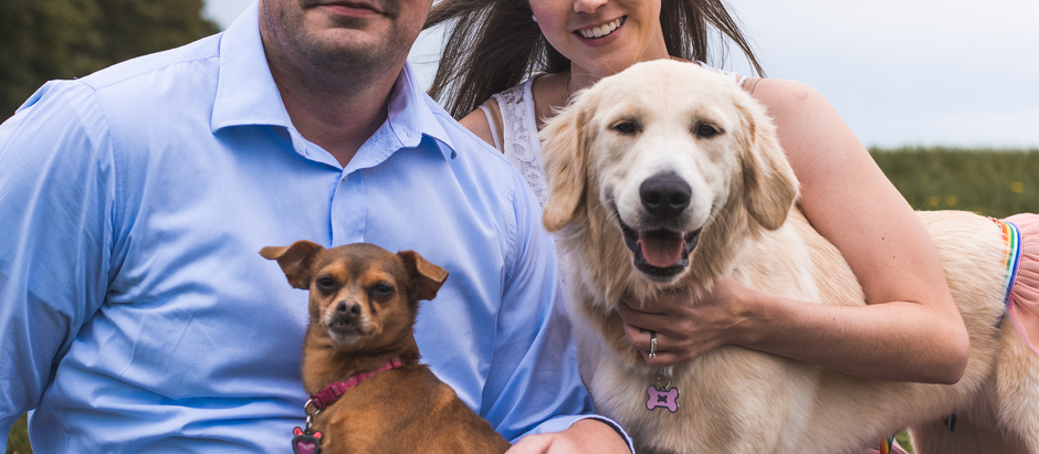 Lauren, Tom, Minnie & Lucy 9.9.2018 - Fur Family Photo Session