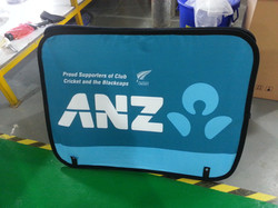 ANZ Cricket Stand Up  copy