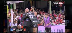 Collingwood AFL