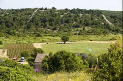 Field of Dreams cricket field