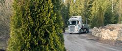 Makebuddy Scania