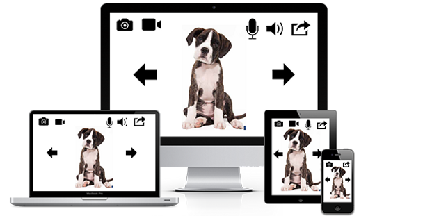Remote Wifi PetCam | Wireless Pet Monitor System