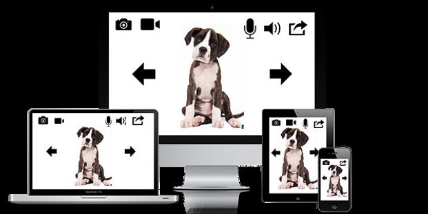 Remote Wifi PetCam   Wireless Pet Monitor System
