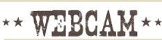 Barneys_WebCam_Banner.jpg