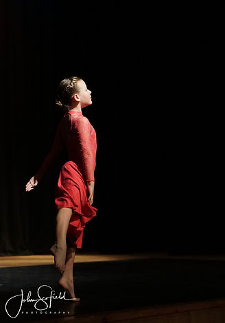 RAPA Dance Show 2017 - 183 - Copy.jpg
