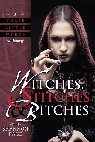 witches, dark fantasy, fantasy, magic, J.H. Fleming, anthology, collection, short stories, author j.h. fleming, evil girlfriend media, witches stitches and bitches, the far horizon