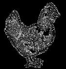 chicken 1.png