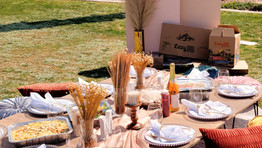 Have yourself an Elegant Picnic at the park made easy