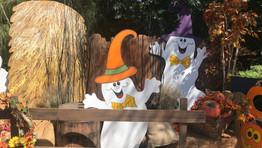 It's Boo Time at the Santa Ana Zoo!