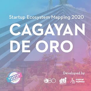 Website_CDO_startup ecosytem mapping_0_0