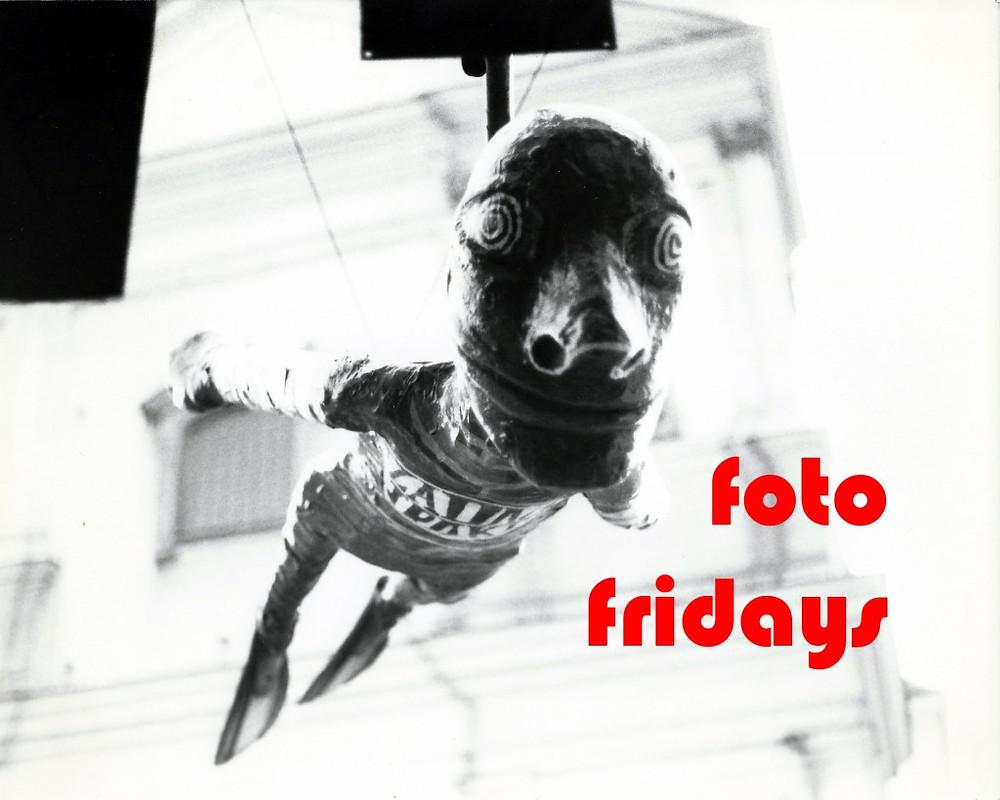foto_friday
