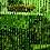Thumbnail: Kralengordijn groen