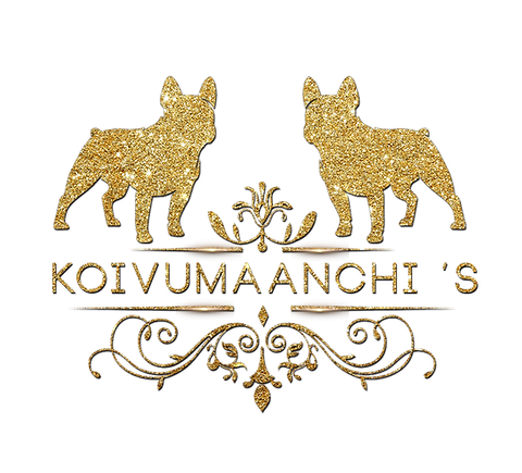 koivumaanchislogo-golden.png