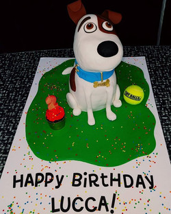 Happy Birthday Lucca! #edibleart #thecakeplaceavon #lifeofpets #birthdaycakes
