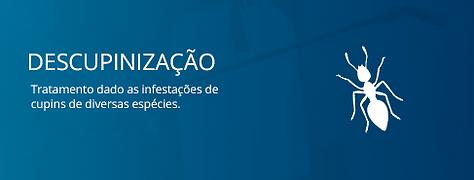 DESCUPINIZAÇÃO.png