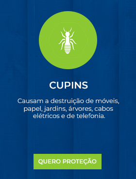 Cupins.png