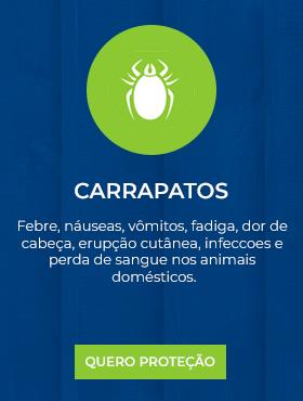 Carrapatos.png