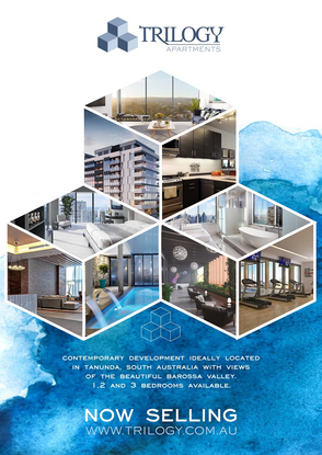 Property Development Flyer