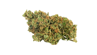 download-weed-png-transparent-png-png-im