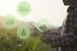 Hand holding Tablet connected with Sensor network and read a report Agriculture technology agricultu