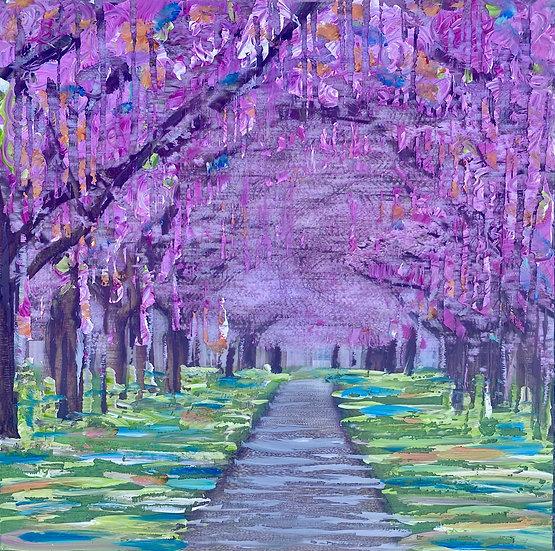 Sakura - Cherry Blossom lane